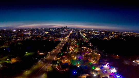 What a spectacular view! The Garden of Unearthly Delights now takes up almost the whole block of Rundle Park, East Terrace.
